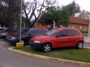 Faltou lugar pra estacionar? Use a grama!
